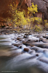 Narrows, Zion, National Park, Utah