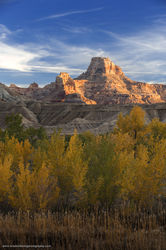Buckskin Wash, Utah, fall