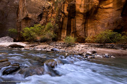Narrows, Zion National Park, Utah​, desert varnish