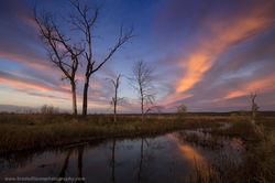 honey Creek, Iowa, Sky, Sunset, Color, Fall