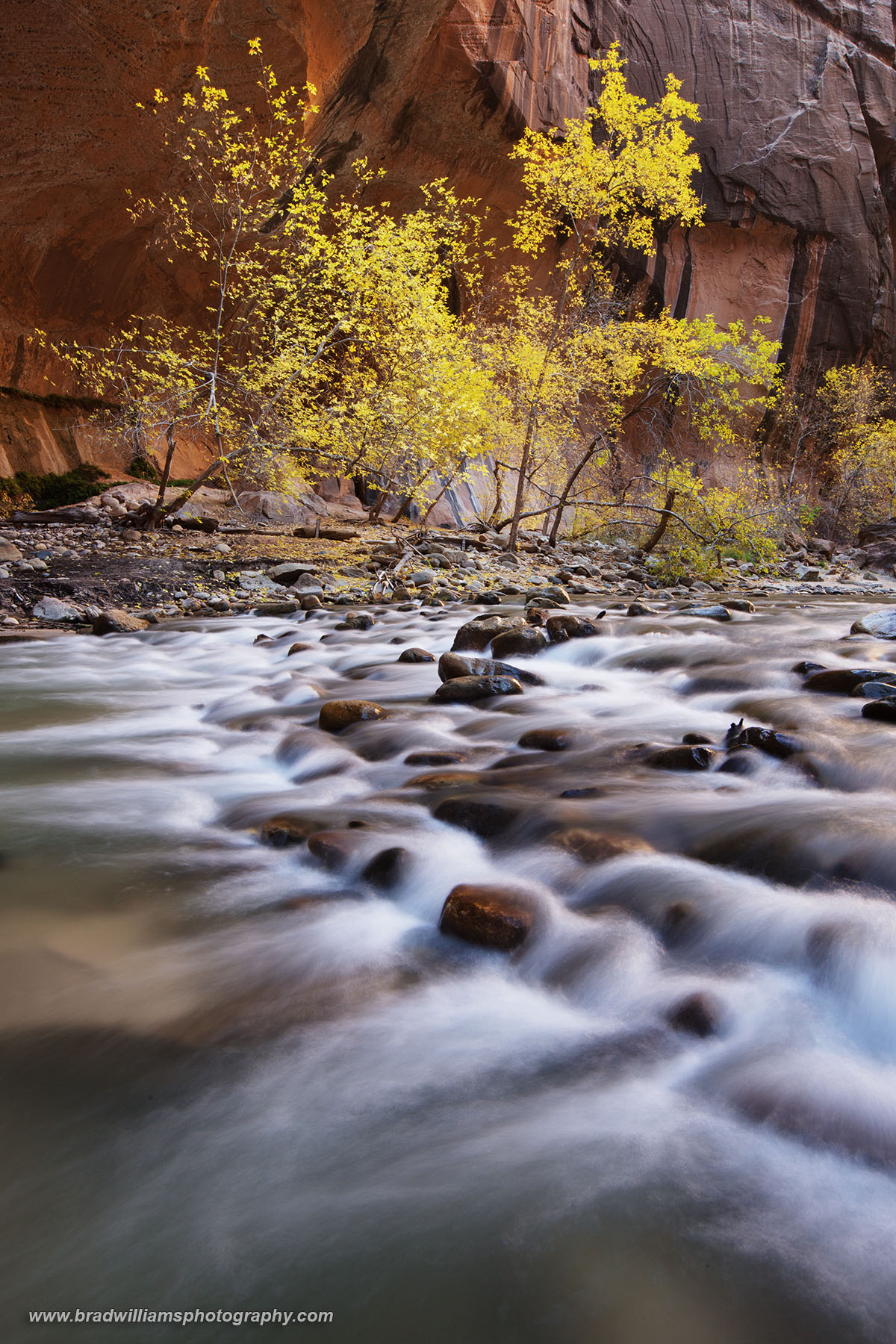 Narrows, Zion, National Park, Utah, photo