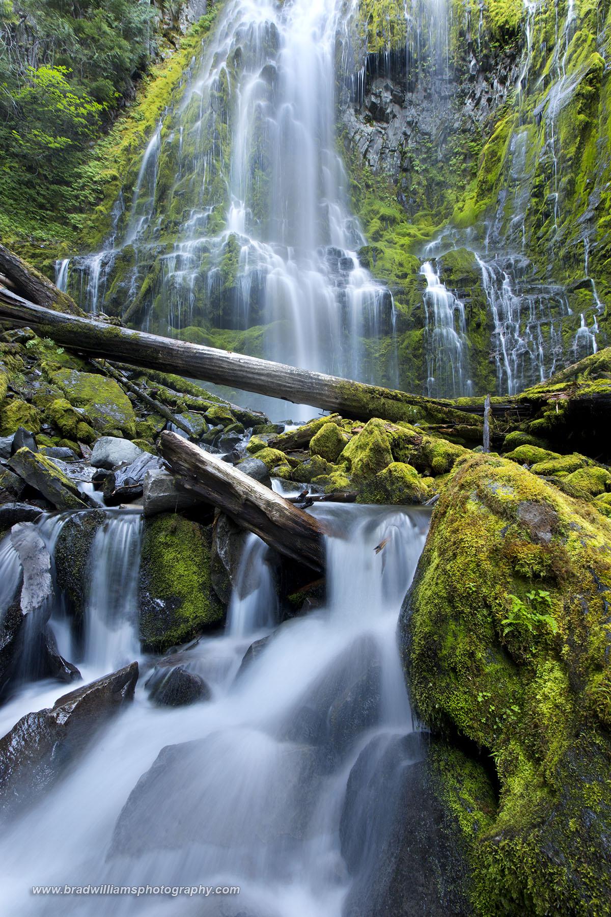 Proxy Falls, waterfall, Oregon, West Coast, photo