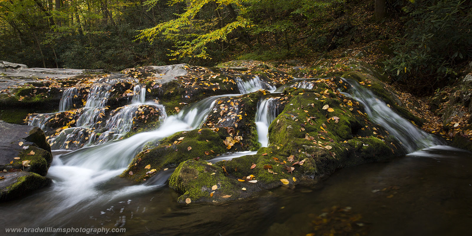 Great Smokey Mountains, National Park, Tennesee, Laurel Creek, Falls, photo